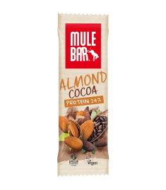 protein-bar-almond-cocoa