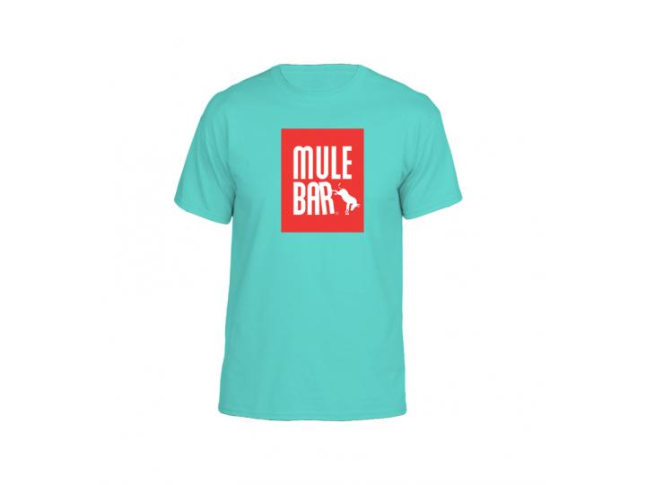 T-shirt de Coton Bleu