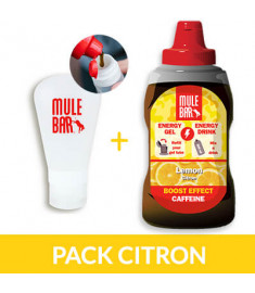 Recharge de gel citron + fiole 60 ml