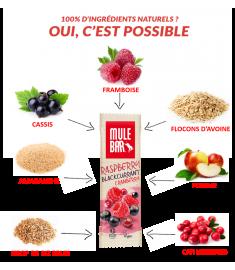 Ingrédients barre Mulebar fruits rouges