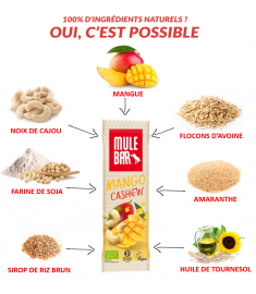 Ingrédients barre Mangue Noix de Cajou Mulebar